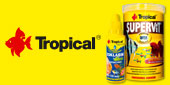 tropical_baner_boczny