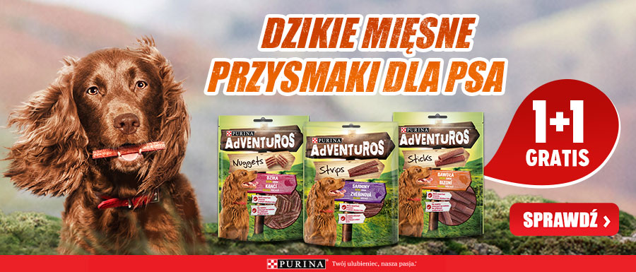 purina adventuros baner glowny