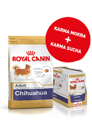 ROYAL CANIN BREED CHIHUAHUA ZESTAW