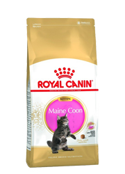 ROYAL CANIN FELINE KITTEN MAINE COON 36